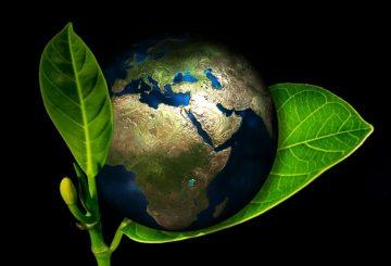 Kilka zasad eco-drivingu