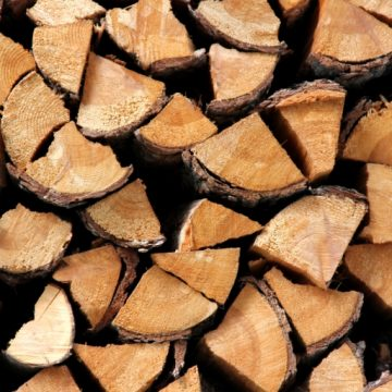 Minister Szyszko chce spalać polskie lasy