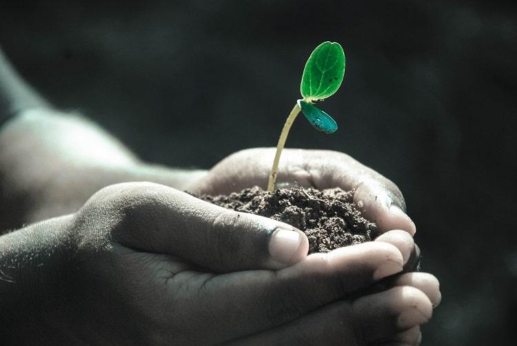 gleba - bogactwo które niszczymy