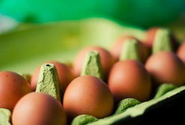 jajka-od-szczesliwych-kur
