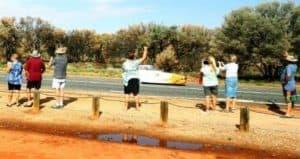 Nuna9, Nuon, World Solar Challenge