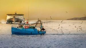 przełowienie ryb