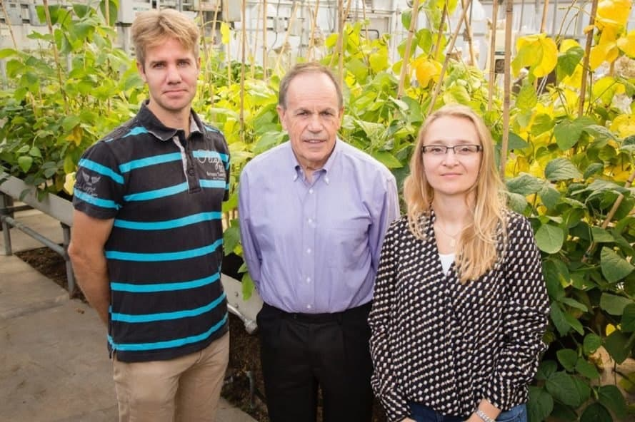 University of Illinois, University of Illinois scientists, scientists, plant scientists
