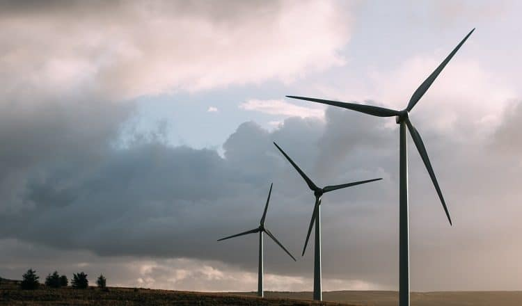 wiatraki turbiny wiatrowe