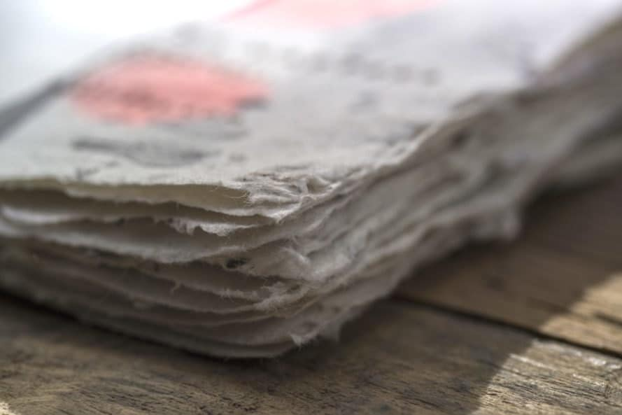 Biodegradable Bee Saving Paper