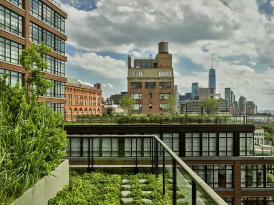 landscaped rooftop